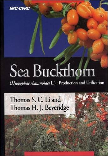 The Sea Buckthorn plant contains over 190 nutritional compounds